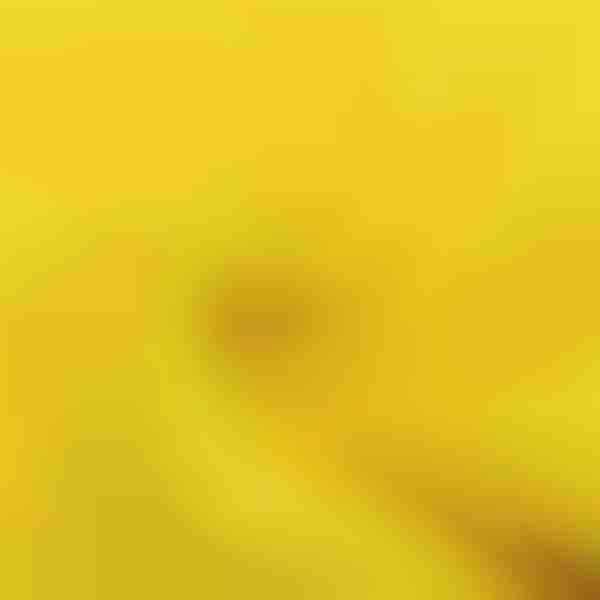 krpa od mikrovlakana