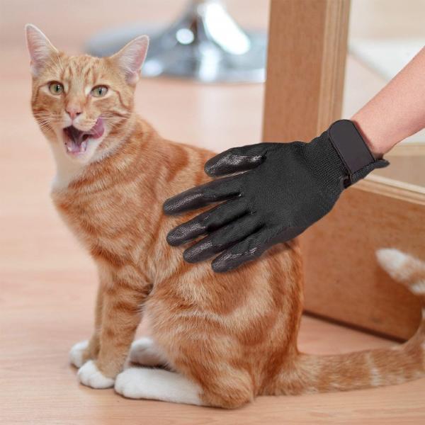 ćešljanje mačaka
